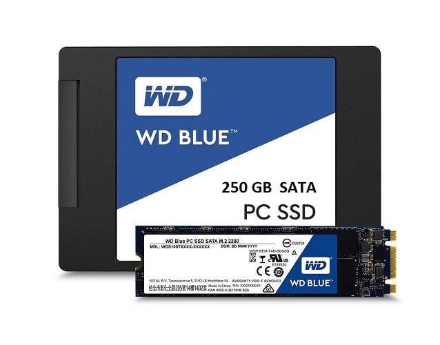 Ổ Cứng SSD WD Blue 250GB 2.5 inch SATA iii Giá Rẻ