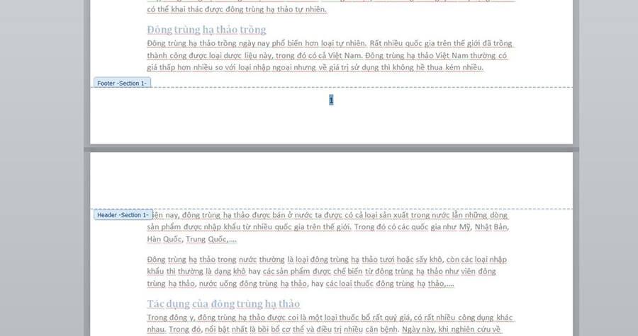 Cách đánh số trang trong Word chi tiết hình 10